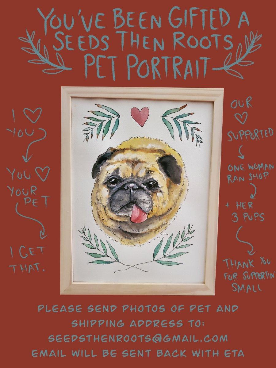Image of PRE PAID PET PORTRAIT