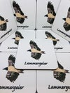 4 Pack Lammergeier Coaster Set
