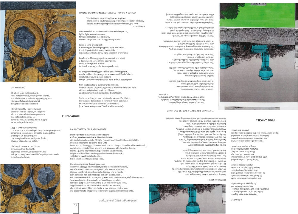 ISSUE 3 - DENDROLOGY