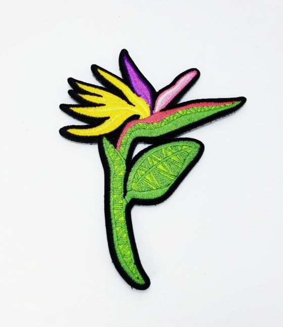 Image of Birds of Paradise Tribal flower