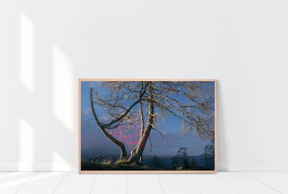"Image of Landart Installation I, from the Series ""Feels like Home"", Kliening, 2015"