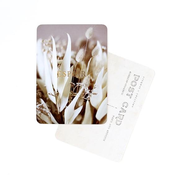 Image of Carte Postale ESPOIR / DORÉ / BRINDILLE NUDE