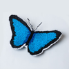 Morpho Butterfly By Laura James