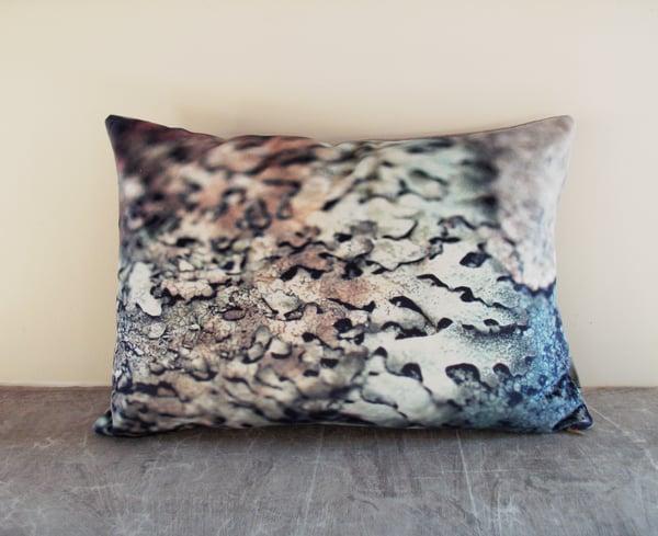 Image of Silver lichen, luxury velvet cushion