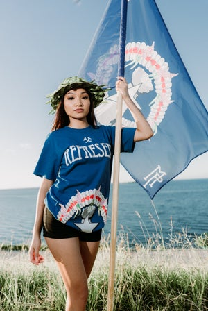 Image of The CNMI Flag