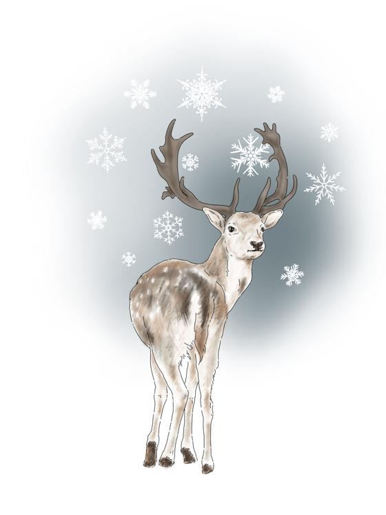 Image of Carte de vœux ou affiche thématique «Noël des animaux»