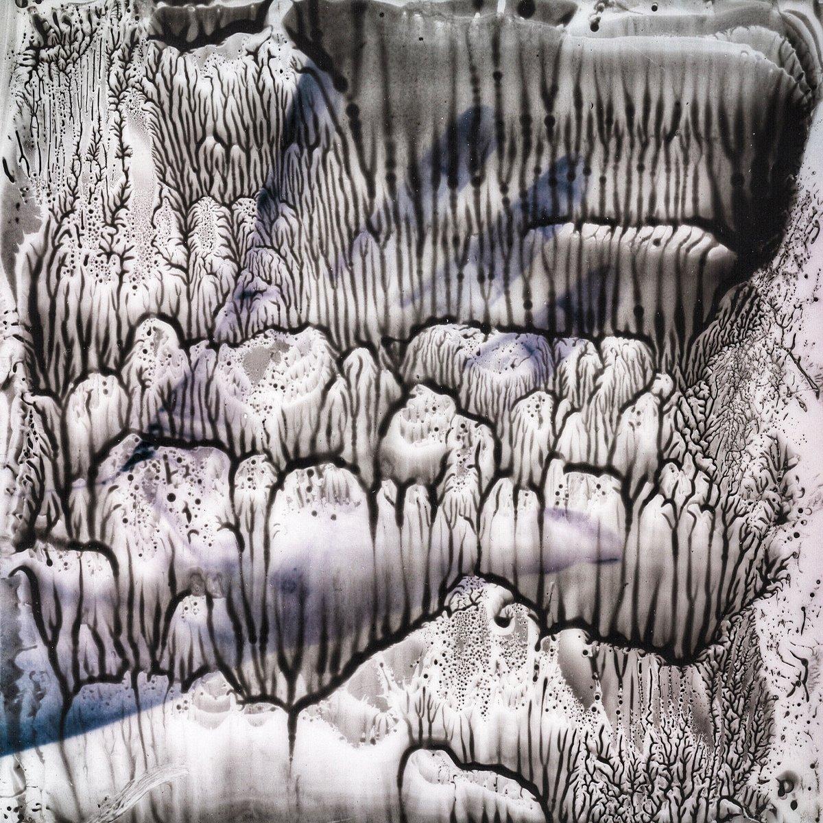 Dendrites 2