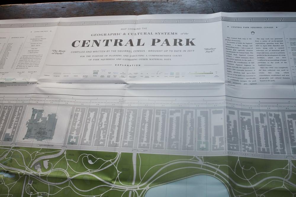 Image of Central Park Squirrel Census 'Terrestrial' Map