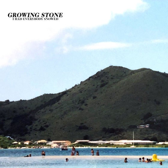 Image of Growing Stone - I Had Everybody Snowed LP