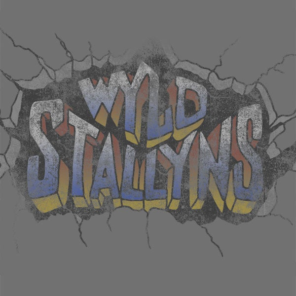 Image of Wyld Stallyns World Tour