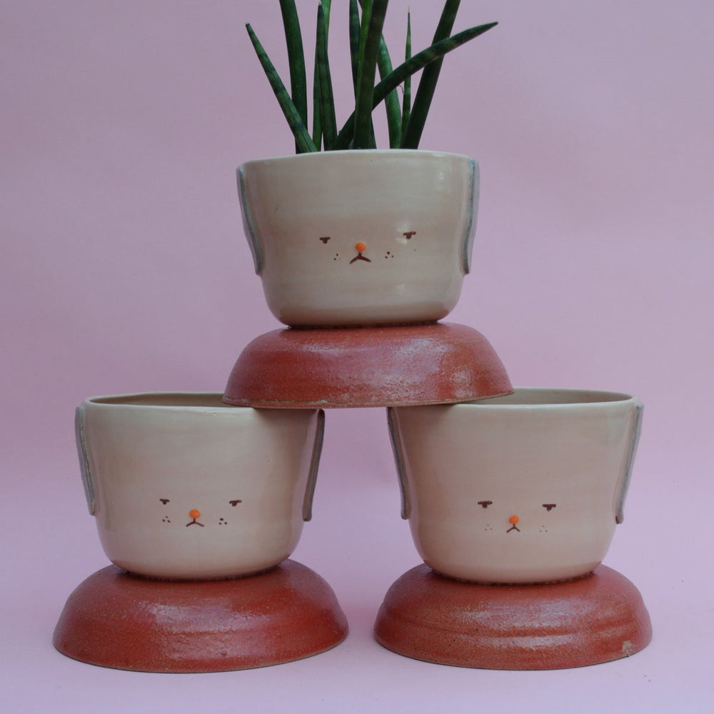 Image of Fufu Medium Planter