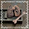Perfect Pairs • Lungs and Bone Marrow