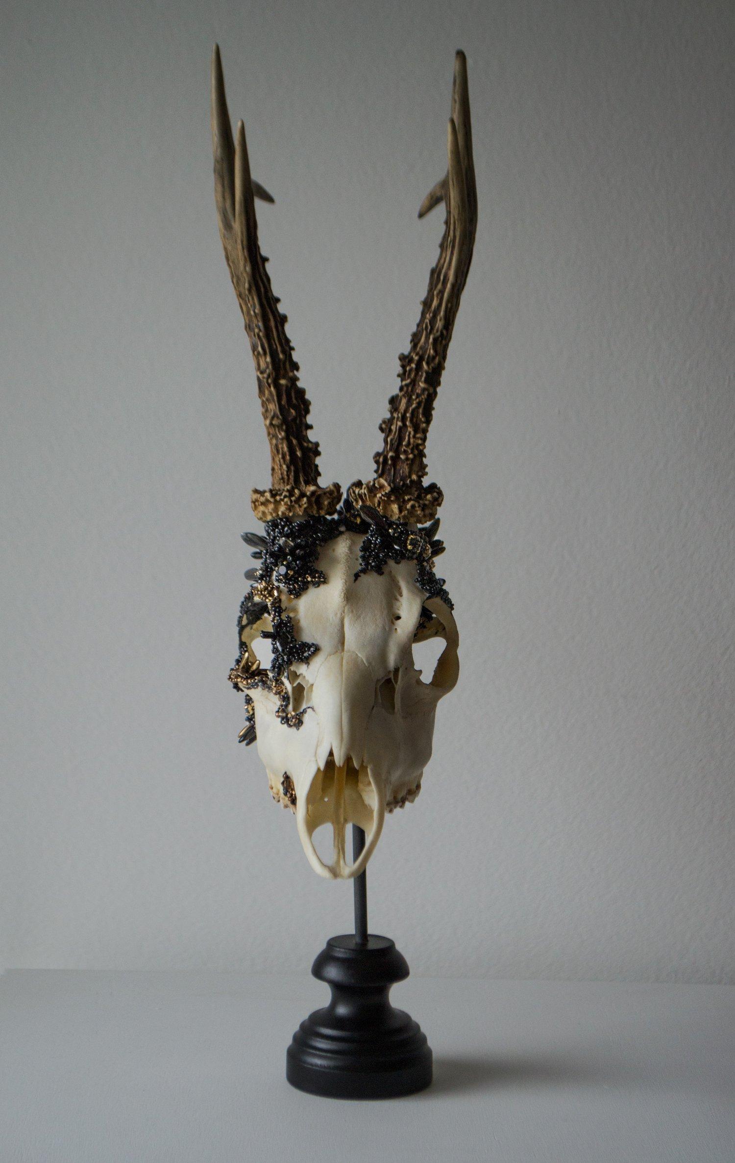 Image of Crystallized Skull #2