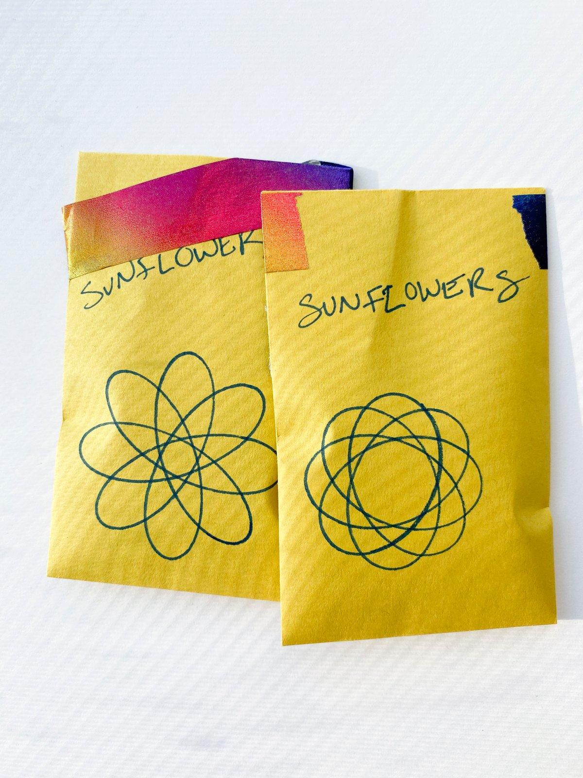 Image of Mammoth Sunflower Seeds