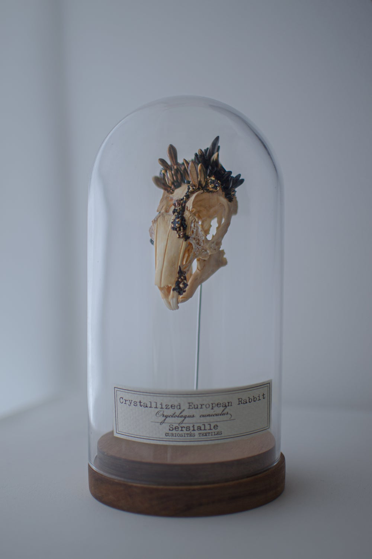 Image of Crystallized Skull #5
