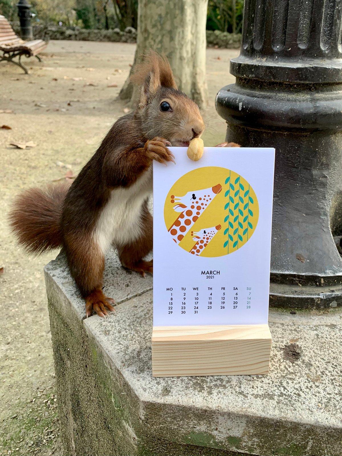Image of Calendar 2021 / Calendario 2021