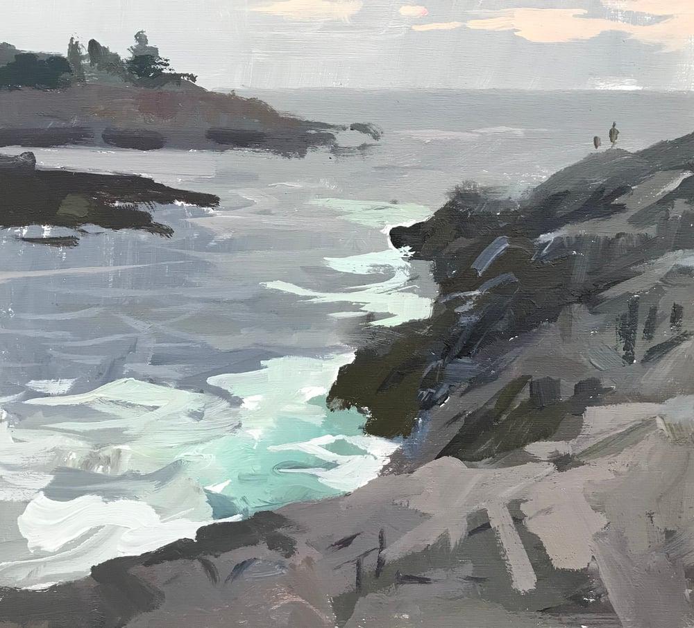 Image of Maine Coast study