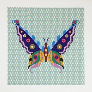 Image of Fulvia Mendini, Farfalla Turchese