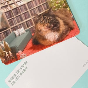 Set of 12 Cozy Holiday Postcards NOW 30% off!