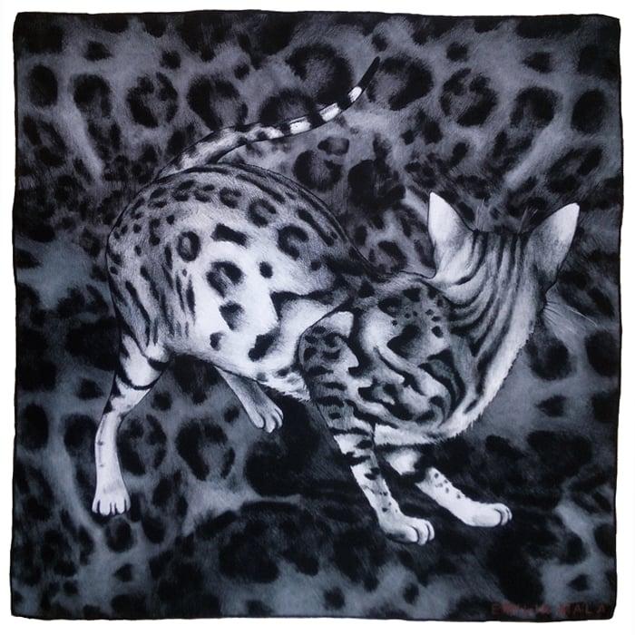 Image of Grand Bengal Silk Scarf / Grey