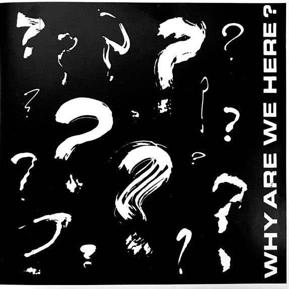 "VARIOUS - ""Why Are We Here?"" 7"" EP"