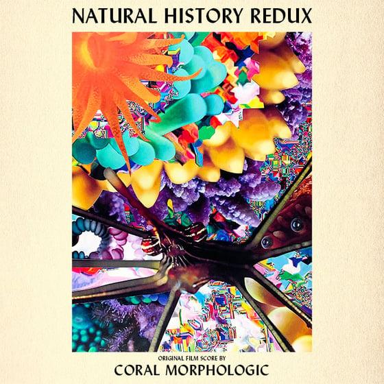 Image of Natural History Redux - Original Film Score (Digital Album)