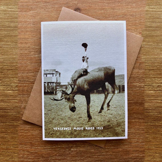 Image of Moose Rodeo - Greeting Card - by David Holub