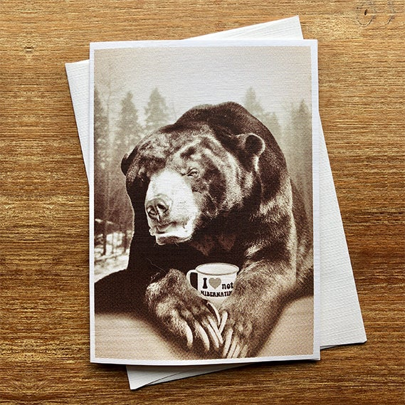Image of Bear Not Hibernating - Greeting Card - by David Holub