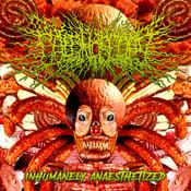 Image of COLONOSCOPY Inhumanely Anaesthetized mCD NEW!!!