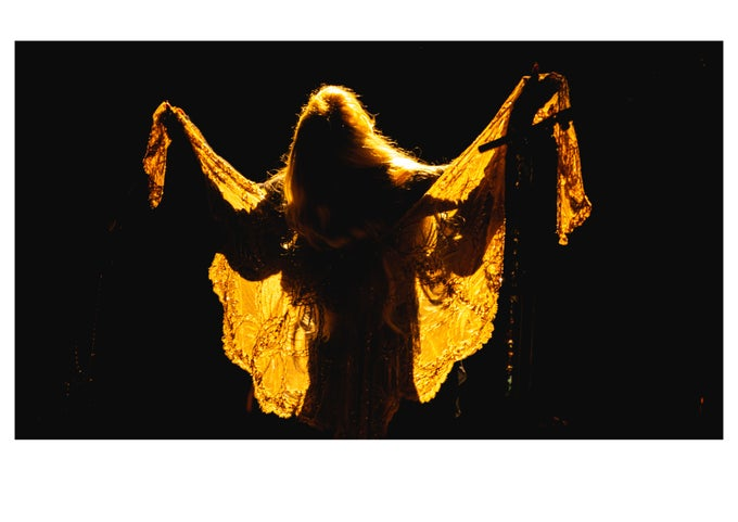 Image of Stevie Nicks Gold Dust Woman