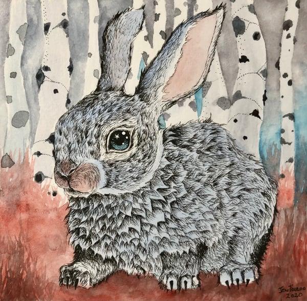 Image of Winter Rabbit in Birch Forest