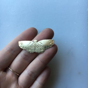 Image of moth pin VI