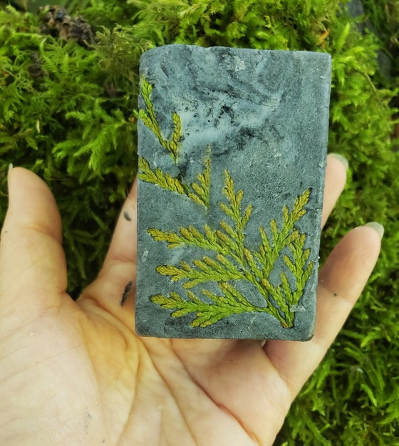 Image of Pine & Sage Man Soap