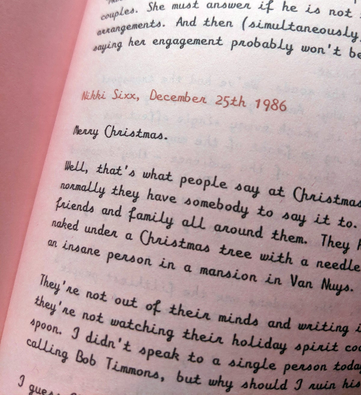 Image of Christmas Day Diaries