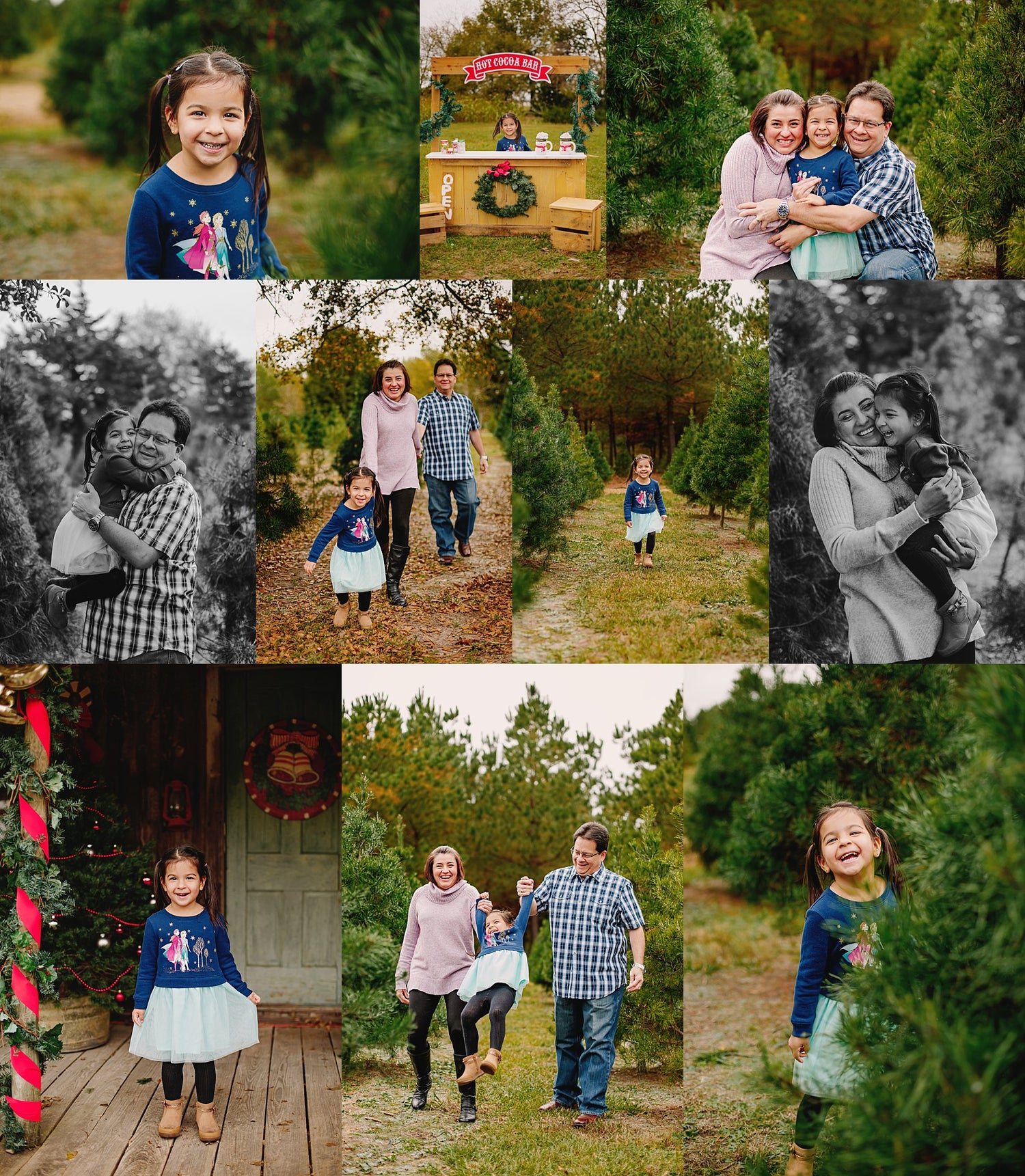 Image of November 2021 | Tree Farm Mini Session