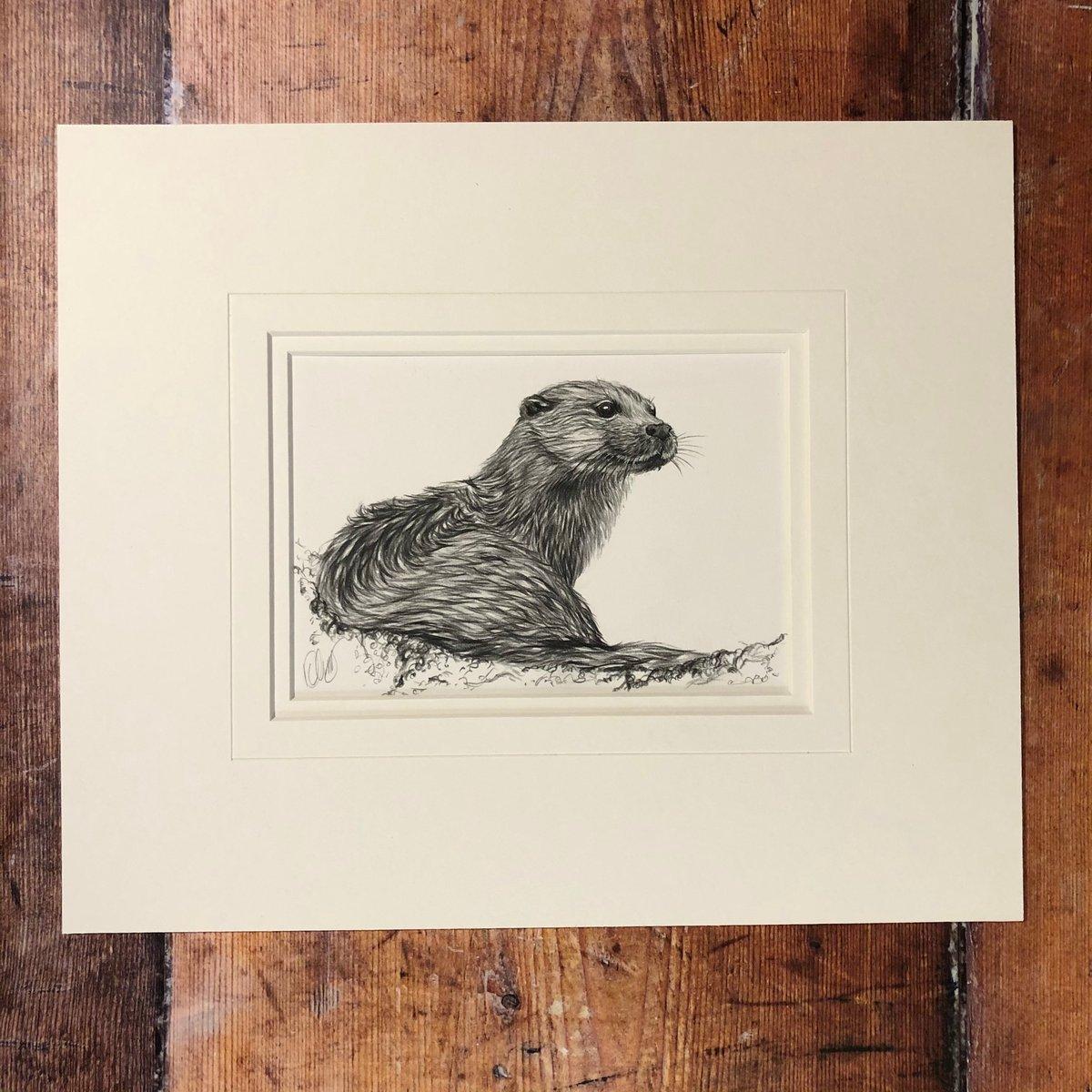 Image of Otter - Origianl Graphite Drawing