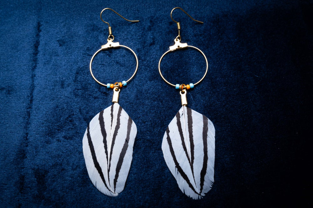 Image of Striped Silver Pheasant Hoops