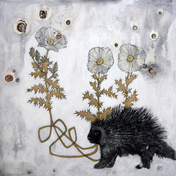 Image of Porcupine by Jenn Rawling