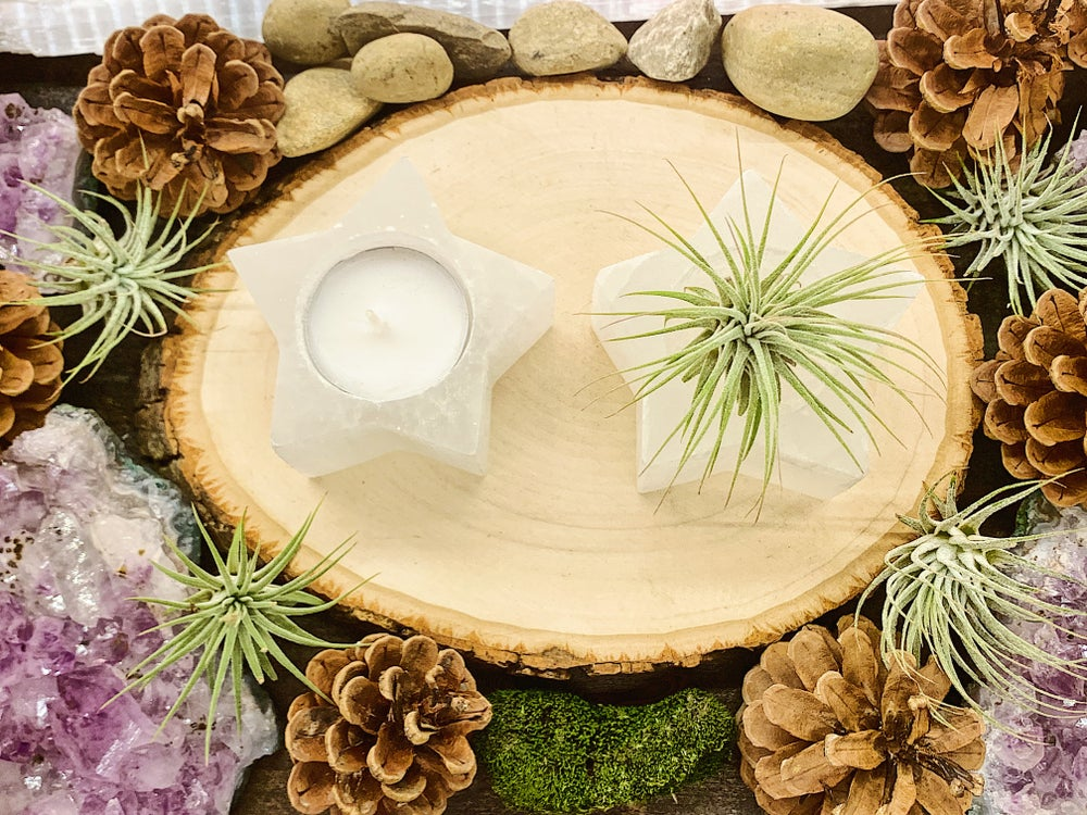 Image of Star Selenite Candle or Air Plant Holder