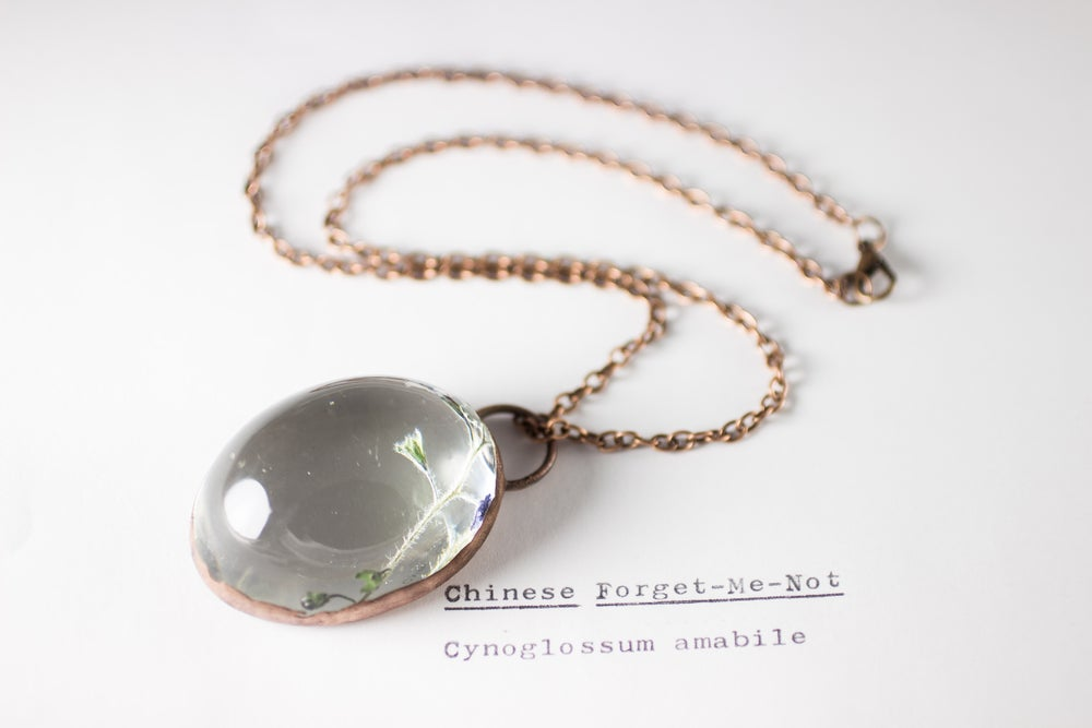 Image of Chinese Forget-Me-Not (Cynoglossum amabile) - Copper Plated Necklace #4
