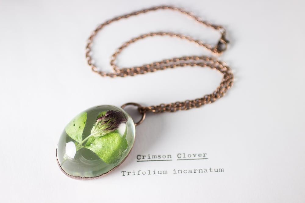 Image of Crimson Clover (Trifolium incarnatum) - Copper Plated Necklace #4