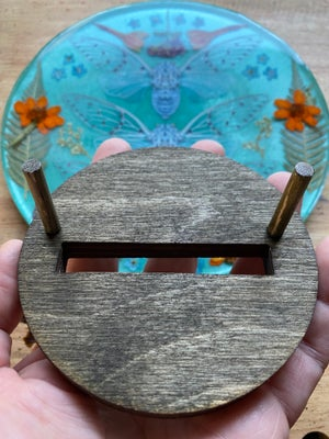 Image of Cicadas and Pressed Flowers in Resin
