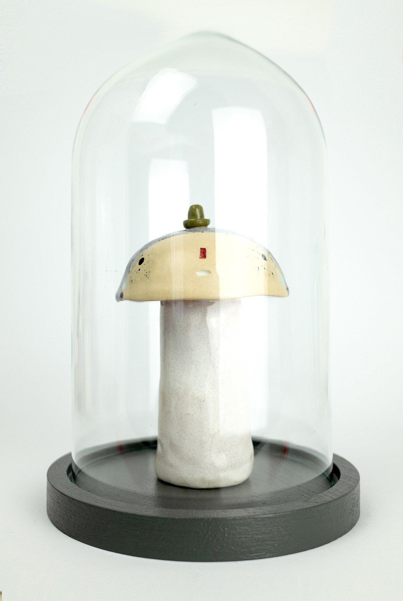 Image of Pilz mit Hut  No. 8