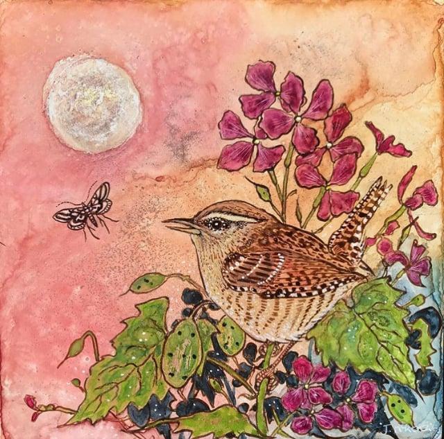 Image of Wren, moth and honesty