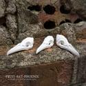 PYO Blank Mini Ornate Fantasy Bird Skulls