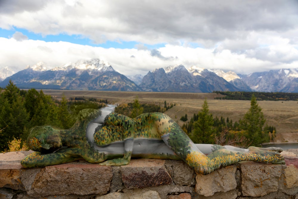 Image of Snake River Overlook - Grand Teton National Park (National Park Series)