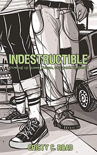 Image of INDESTRUCTIBLE (Microcosm, 2005, Paperback)