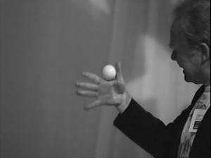 Image of Denny Haney Billiard Ball - Training Session