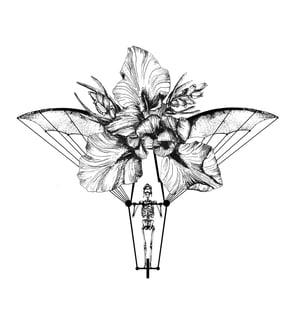 Image of ÔIKB