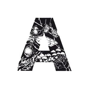 Image of [A] ADH - AROMA DE HORMIGUERO